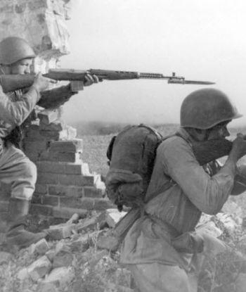 იპოვე შენი წინაპარი: მეორე მსოფლიო ომში დაკარგული მეომრების გვარები, რომელთა ნეშტი ნაპოვნია